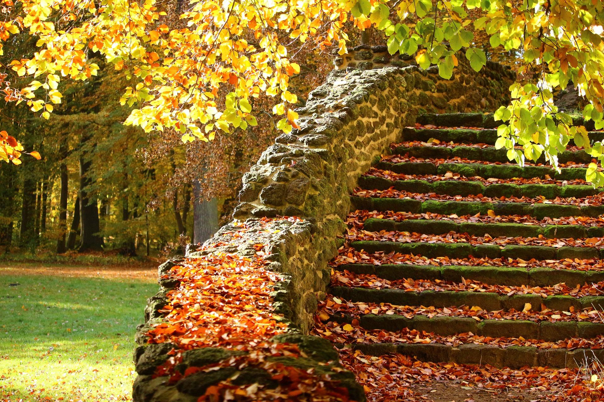 頑張り過ぎてないのがおしゃれな階段のモザイクタイル